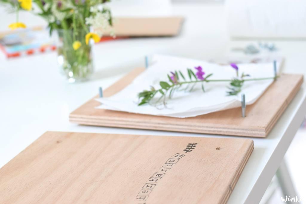 Lees hier hoe je een plantenpers voor je herbarium kunt maken | www.wimke.nl