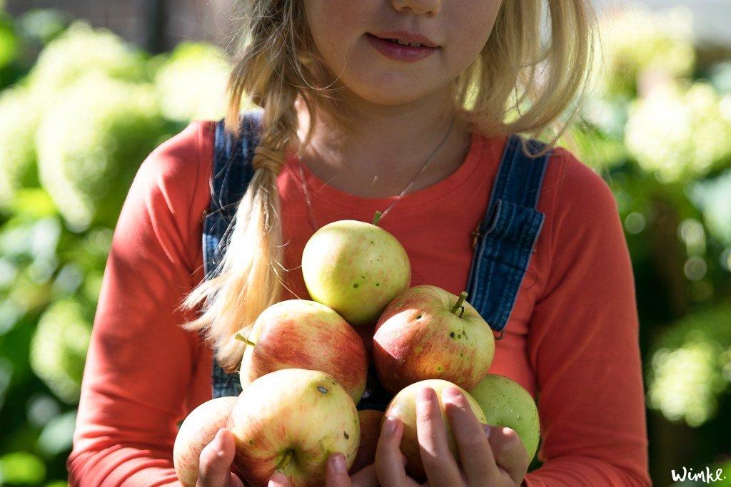 Appelchips maken - www.wimke.nl