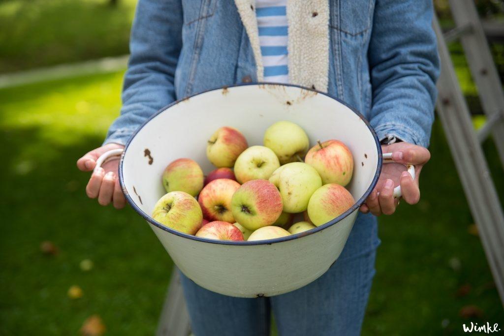 Recept appeltaart met yoghurt en walnoten – jaarlijkse appelpluk